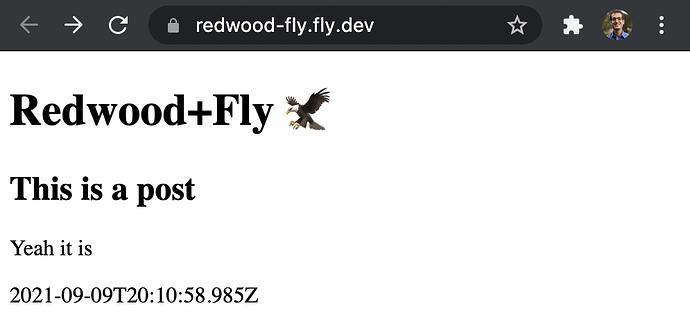 02-redwood-fly-deployed